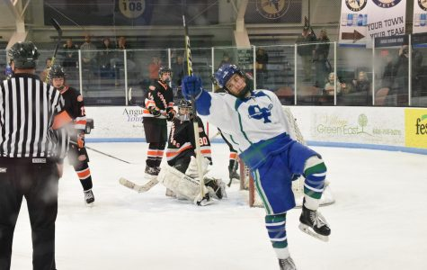 Bluebirds take down Cedarburg 5-2