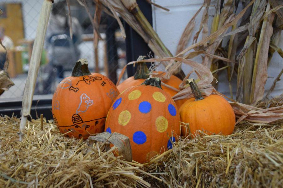 Fall+festival+pumpkins