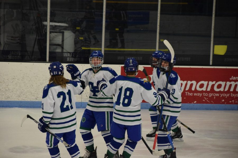 The Bluebirds celebrate after scoring early into the 1st Period.