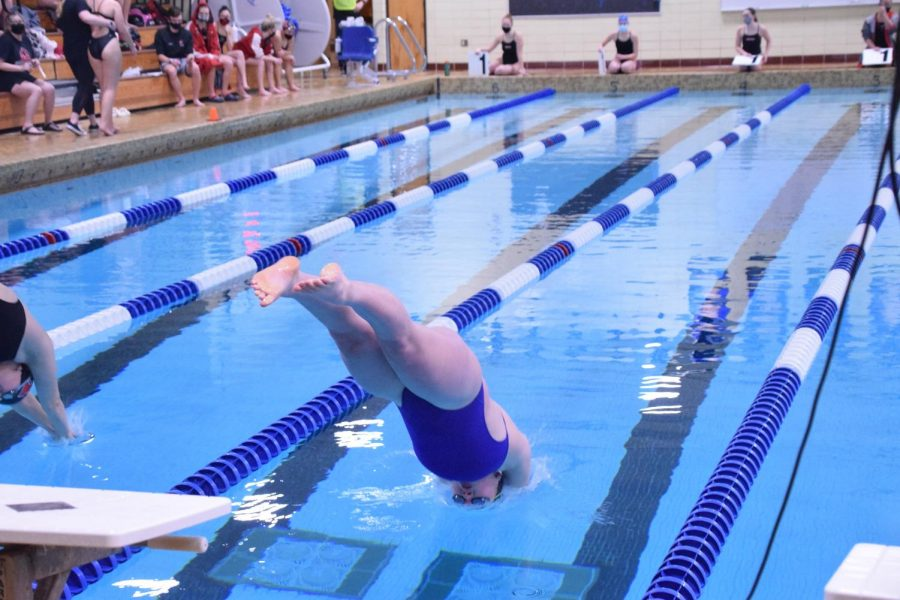 Ally Donagan enters the water for the start of the 500 freestyle.