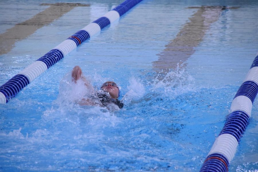 Guenther backstroke 4