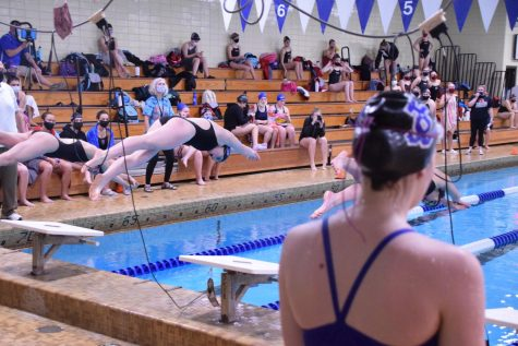 Junior Maya VanBerkum springs from the blocks at the start of the 50 freestyle.